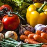 Como Conservar Legumes Sem Riscos e Perdas